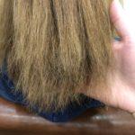 ハイトーンカラー、ハイライト、パーマ失敗でビビり毛に…これって治せますか?熊谷市唯一の髪質改善美容室ハルト